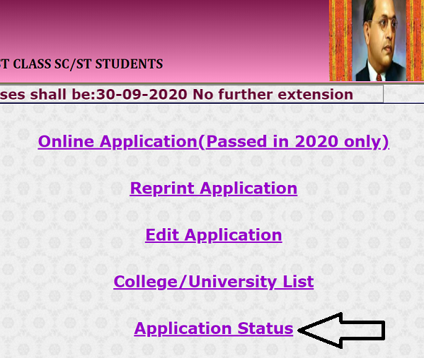 sw kar nic in application 2020